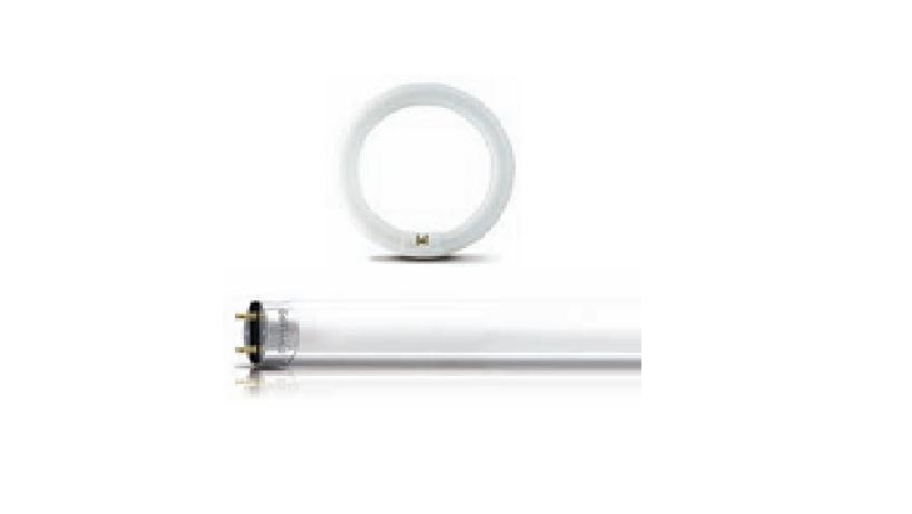 Bóng đèn huỳnh quang Philips LIFEMAX - PHILIPS
