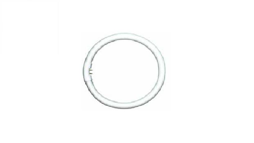 Bóng huỳnh quang vòng TL5 Circular Essential - PHILIPS