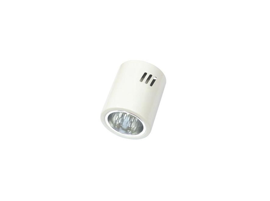 Đèn Downlight (loại gắn nổi) - RDS