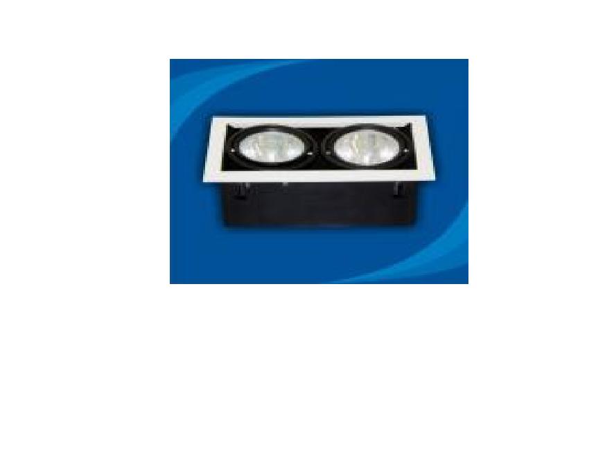 Đèn rọi âm trần Paragon - OLK270G12(DLK1204)