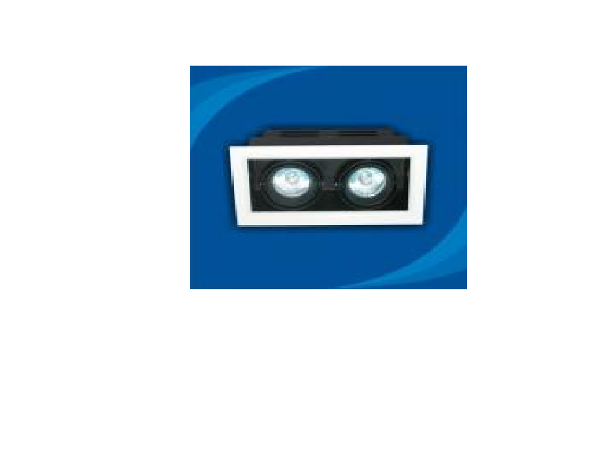 Đèn rọi âm trần bóng Halogen Paragon - OLA250MR16(DLK1185)