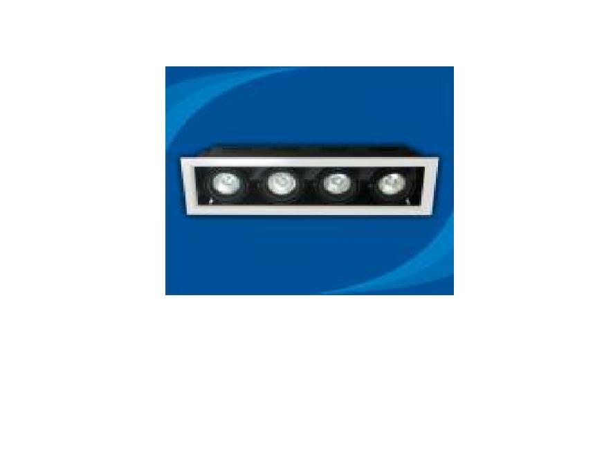 Đèn rọi âm trần bóng Halogen Paragon - OLA450MR16(DLK1187)