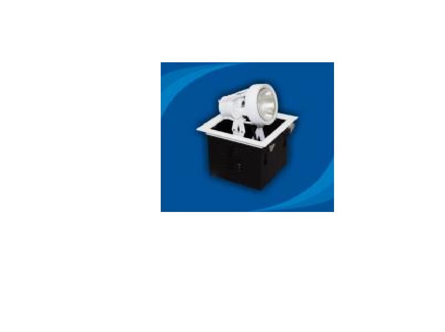 Đèn rọi âm trần bóng PAR30 - OLN170P30 (DLK1213)