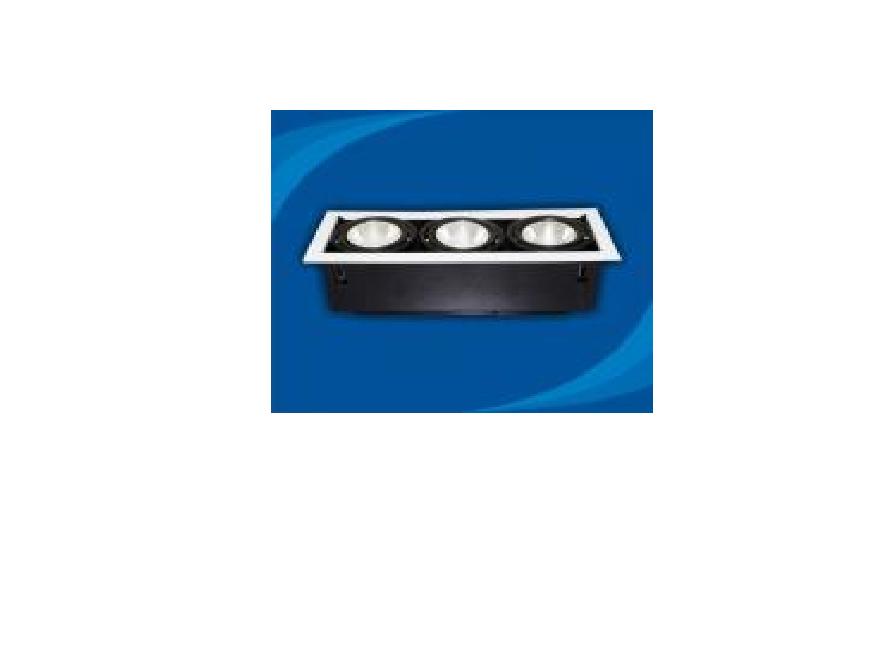 Đèn rọi âm trần bóng PAR30 - OLL370P30 (DLK1207)