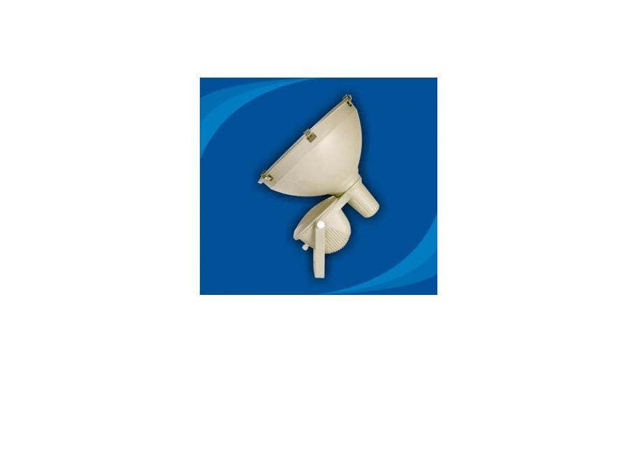 Đèn pha chống thấm nước - POLD100065 (DPP 008)