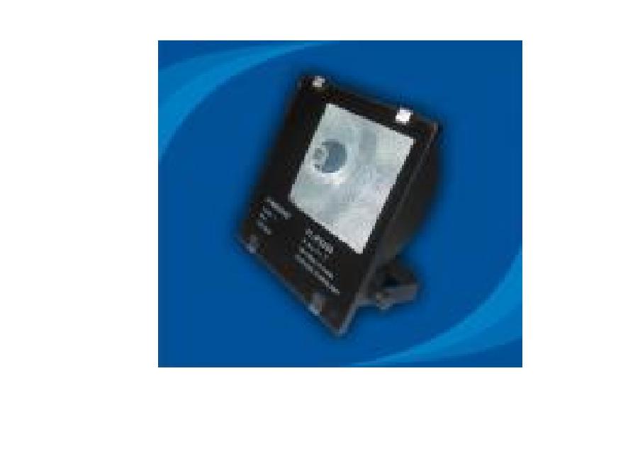 Đèn pha chống thấm nước - POLA25065 (DPP 002)